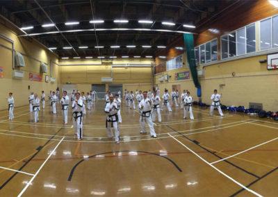 UKTD Seminar Wales 1