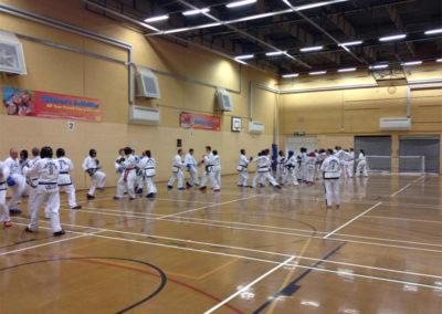 UKTD-Seminar-Wales-7