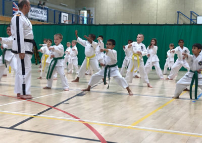 UKTD Taekwon-Do Masterclass Junior Session May 2017