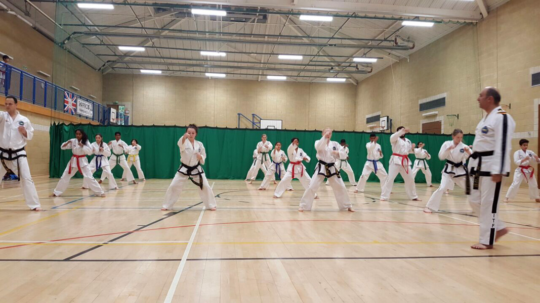 United Kingdom Taekwon-Do Dojangs Masterclass 07th May 2017