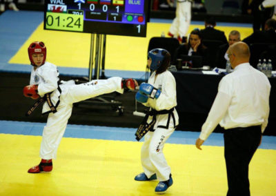 UKTD representation at The Euros 2017 Jade, Red, sparring