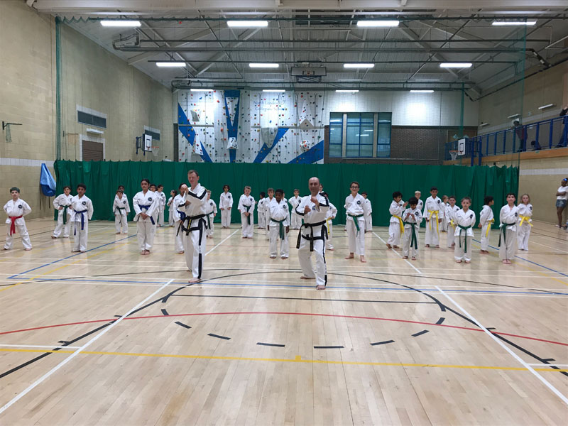 UKTD Taekwon-Do Master Class May 2018