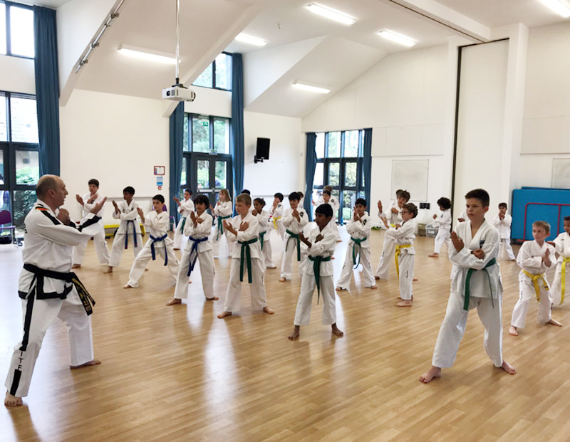 UKTD Taekwon-Do Master Class July 19