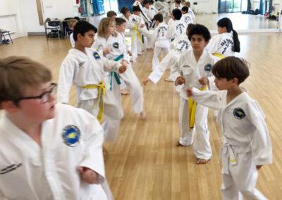 UUK Taekwon-Do Dojangs London Master Class July 2019