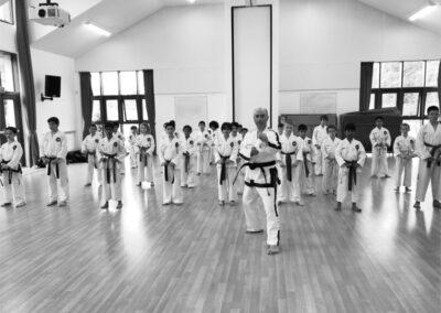 UK Taekwon-Do Dojangs London Master Class July 2019